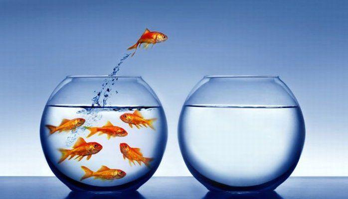 Los cuatros retos de la Marca Profesional al interior de la empresa
