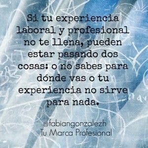 frase 5. experiencia laboral no te llena